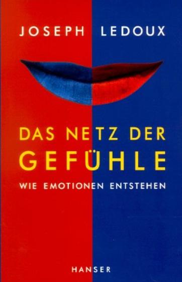Das Netz der Gefühle, wie Emotionen entstehen